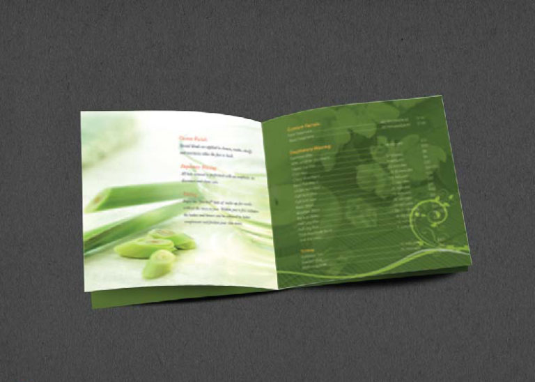 Brochure Design Company in Kolkata - SPA Brochure -2