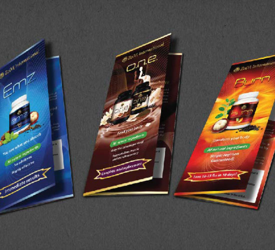 Brochure Design Company in Kolkata - booklet design-1
