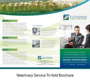 Animal Farming Brochure